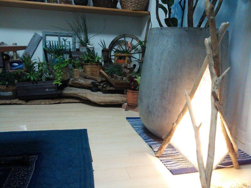 流木ランプ2