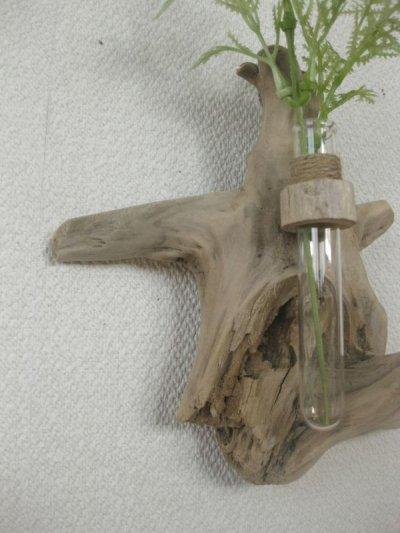 画像4: 流木葉瓶039