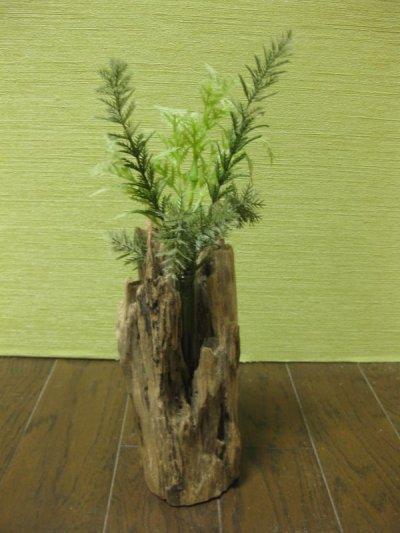 画像1: 流木葉瓶048